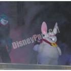 ウサギとナマズ?