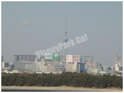 遠くには東京 スカイツリーが